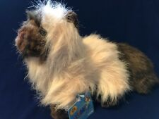 """Webkinz Hm165 Himalayan Kitten Cat 8""""~Brand New With Sealed Code!"""