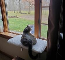 Bed For Cat Near Window Fabric Material Warm And Cool
