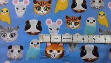 Pet faces Fabric cats mice hamsters gerbils birds fat 1/4s 100% cotton C6190