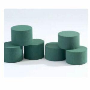 Oasis Wet Foam Cylinders floral foam For Fresh Flowers - va amounts 8cm x 6cm