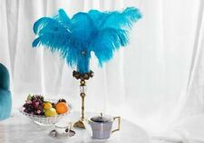 12 Pcs Turquoise Malibu 22-24 inches Ostrich Feather Plume Wing Male Feathers