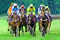 Worcester horse races picture No.3, large framed ready to hang quality canvas