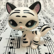 Littlest pet shop W//B Striped Tiger cat kitty Blue Eyes LPS#1498