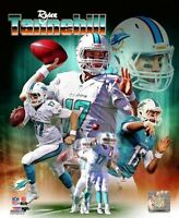 RYAN TANNEHILL Miami Dolphins LICENSED un-signed poster picture 8x10 photo