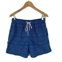 RODD & GUNN Mens Board Shorts Swim Shorts Trunks Size Large Blue