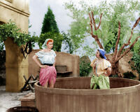 I Love Lucy Lucille Ball Grape Stomping  8x10 Photo