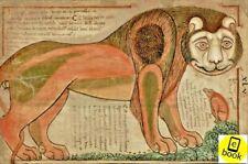 Liber Floridus Antique book