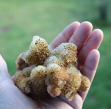 Citrine Spirit Cactus Quartz Crystal Cluster--Cool piece!
