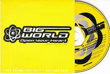 CD CARTONNE CARDSLEEVE COLLECTOR 4T BIG WORLD OPEN YOUR HEART DE 2000
