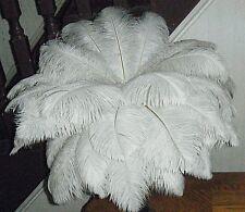 5 Qualità Premium Bianco Naturale Piume Di Struzzo 10-12 pollici di lunghezza per decoratio