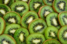 Kiwi Fruit Tree Seeds Here For You!