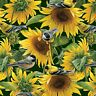 Fabric Wild Birds in Sunflower Field on Green Cotton by the 1/4 Yard