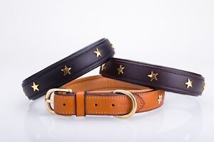 Strong Star leather dog collar, lined and padded with solid brass fittings