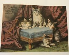 "Antique HOOD'S SARSAPARILLA Cat kittens Advertisement 6"" x 9"""
