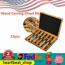Luxury 12 Pcs Wood Carving Kit Chisel Tool Woodworking Cutter Hand Tools Set