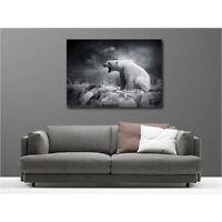 Tableaux toile déco rectangle ours polaire noir et blanc 116983672