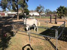 Always Rollin Portable Horse Corrals