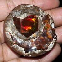 216.60 Cts Certified Natural Opal Tumble Huge Collector's Gemstone - Ethiopia
