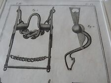 HORSE EQUESTRIAN BITS BRIDLE   amazing mounted 1700s engravings GIFT POTENTIAL g