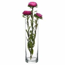 Pasabahce Botanica 26cm Bouquet Flower Clear Transparent Cylinder Glass Vase
