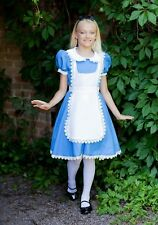 Child Supreme Alice Costume Size Medium 8-10 (missing apron)