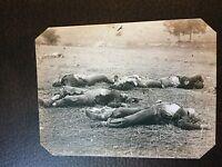 PA Gettysburg Battlefield Field where General Reynolds Fell tintype C785RP