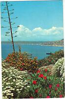 06 - cpa - Echappée sur la mer - Au fond, la Baie des Anges à Nice