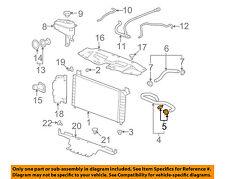 GM OEM Radiator-Upper Hose Clamp 11570391
