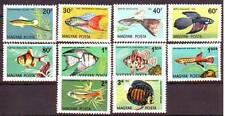 Hungary - 1962. Ornamental Fish - Mnh