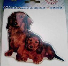 3-D Sticker DACHSHUND DACHSHUND TECKEL with puppies dog