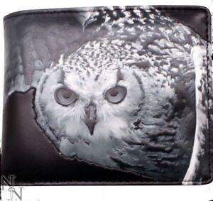 Nemesis Now Men's Wallet Owl