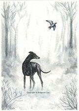Whippet greyhound  Dog  Watercolour   Painting