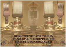 Vintage Classic Valve Tube Ribbon Microphone Mic Pre Amp Recording Studio Flyer