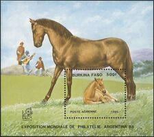Burkina Faso 1985 Horses/Foal/Animals/Nature/Transport/StampEx 1v m/s (b6337)