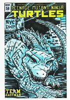Teenage Mutant Ninja Turtles IDW #58 RE IDW