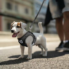 Small Dog Puppy Breathable Mesh Harness Vest Collar Soft strap Leash Reflective
