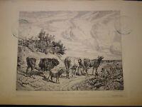 Amédée Elie SERVIN (1829-1884) GRAVURE PAYSAGE VILLIERS sur MORIN BARBIZON 1867
