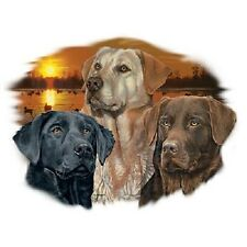 Sunset Labs   Black  Golden and Chocolate Labs  Tshirt   Sizes/Colors