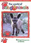 DVD The WORLD OF BABY ANIMALS 4 Great Programs As Seen on Discovery Channel
