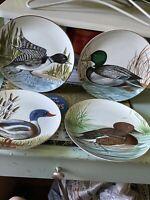 Lot of 4 Collector Plates Taste Seller Duck by Sigma Nancie Goldstein Design