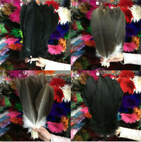 Wholesale 10-100 PCS 14-16inch / 35-40cm Rare and precious Natural Feathers