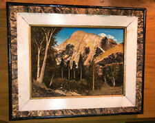 Framed Mid-Century Mixed Media Bark Twig Moss 3-D Mountain Scene ART Diorama