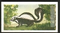 Skunk 60+ Y/O Ad Trade Card