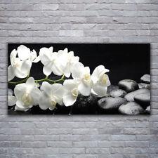 Glasbilder Wandbild Druck auf Glas 120x60 Blumen Steine Pflanzen