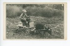 Little Boy Riding Tiny Carriage Pulled by Black Pig!! Cute Strange Hog 1910s