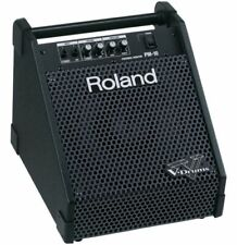 Roland PM-10 30W Personal Monitor for Drums / Keyboard / Vocal / Acoustic guitar