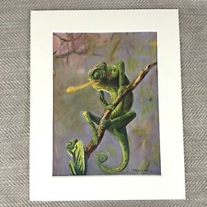 1930 Vintage Print Chameleon Tropical Lizard Reptiles Art Deco