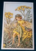 CICELY MARY BARKER FLOWER FAIRIES POSTCARD, THE TANSY FAIRY, OF THE WAYSIDE