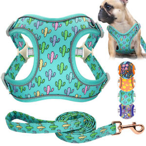 Fabric Mesh Pet Puppy Dog Walking Vest Harness and Leash Reflective Jack Russell
