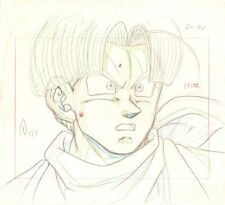 Anime Genga not Cel Dragon Ball Z #191